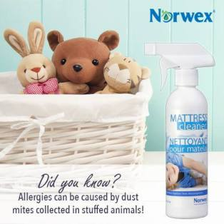 mattress cleaner and soft toys